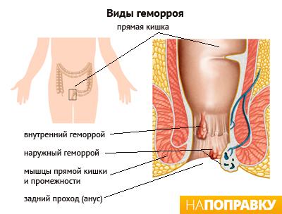 Городская поликлиника люберцы октябрьский проспект