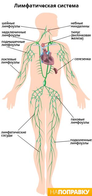 Лечение остеохондроза шейного отдела в санатории болгарии